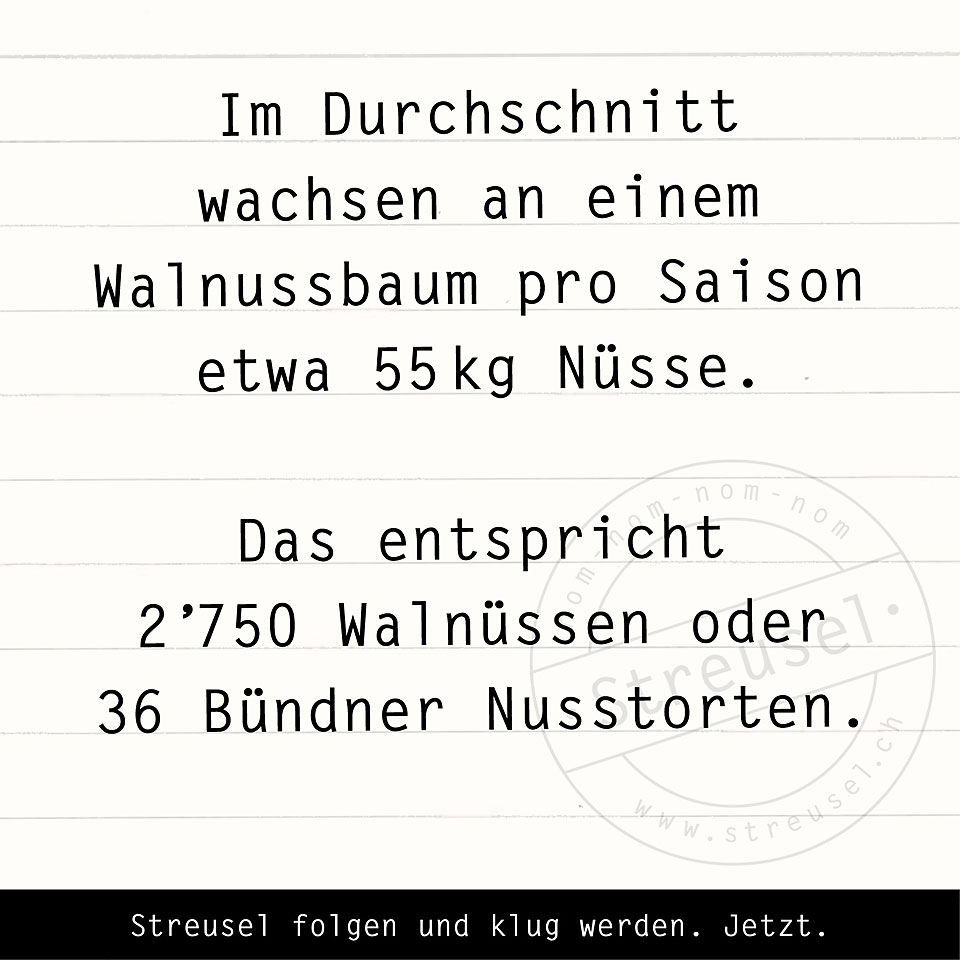 Food Facts zu Walnuss / Baumnuss